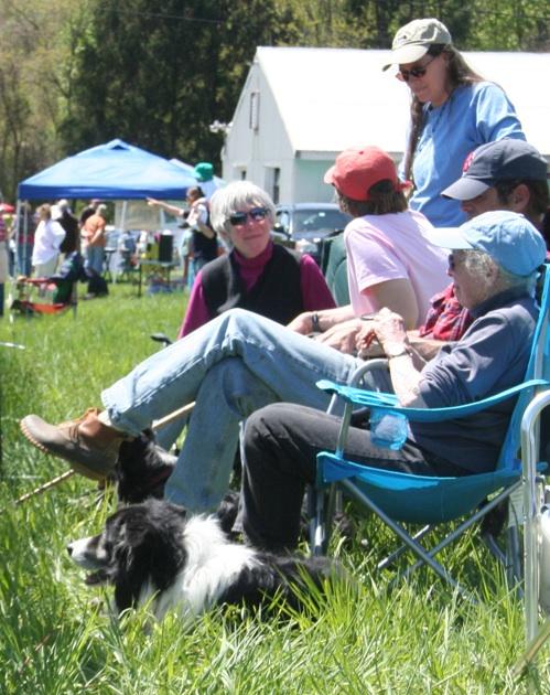 At the sheep dog trials, Moo Dog Press Magazine.